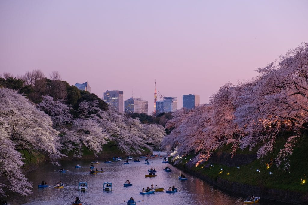 Traveling to Tokyo, Japan with kids
